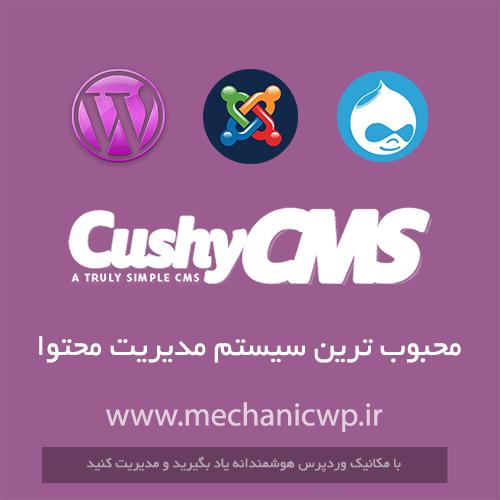 محبوب ترین سیستم های مدیریت محتوای (CMS) وب سایت