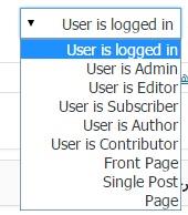 مدیریت نمایش فهرست های سایت با افزونه If Menu وردپرس