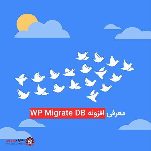 معرفی افزونه WP Migrate DB